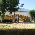 Safari Zoo Dvůr Králové