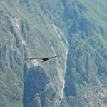 Cruz del Condore