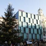 Náměsti Svobody Brno - strom