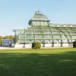 Skleník Zámek Schönbrunn