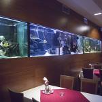 Aquarium Mikulov - interiér