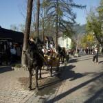 Zakopane - ulice Krupówski