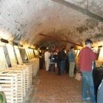 Salon vín - prostory