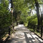 Zámecký park Lednice